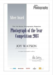 Artists Joy Watson Receives A Silver And Two Bronze Awards
