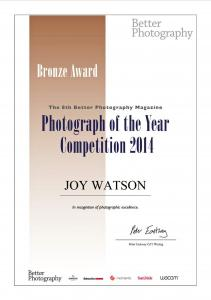 Artist Joy Watson Receives 5 Bronze Awards