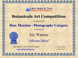 Artist Joy Watson Receives Hon. Mention